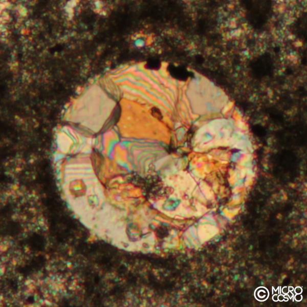 carbonato microbiale