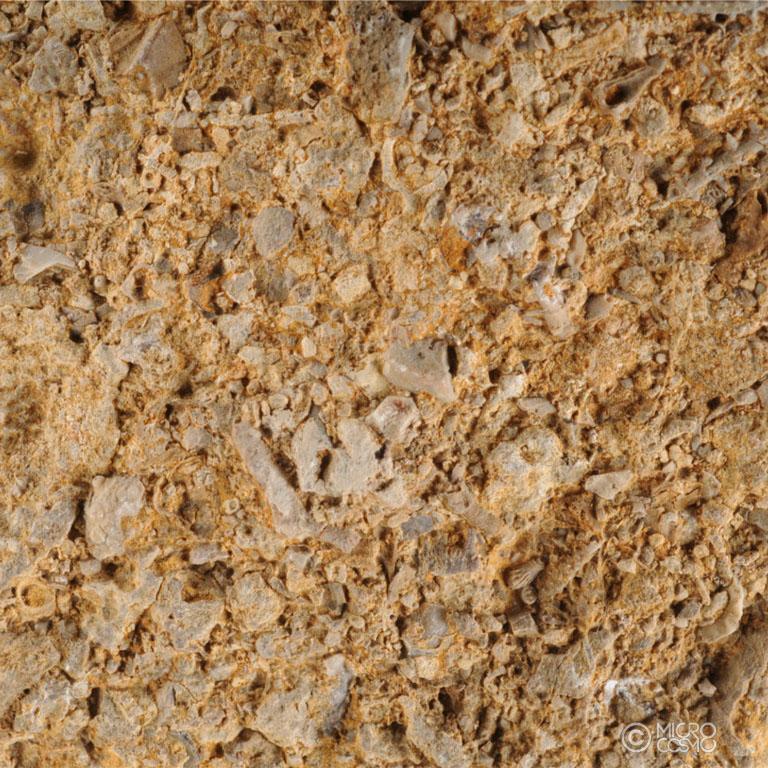 foto macro di roccia sedimentaria chimica