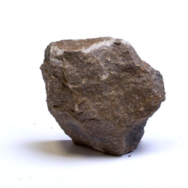 roccia carbonatica con micro fossili