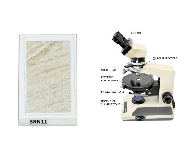 microscopio pèolarizzatore